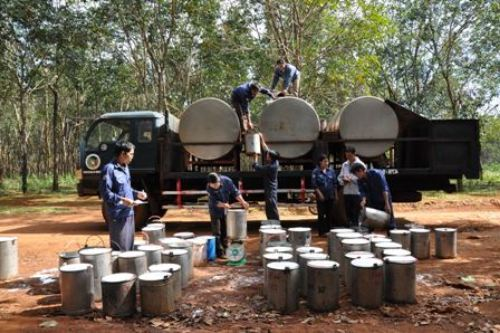 xe chở téc chứa mủ cao su